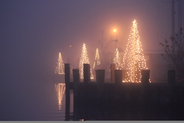 Foglights photo