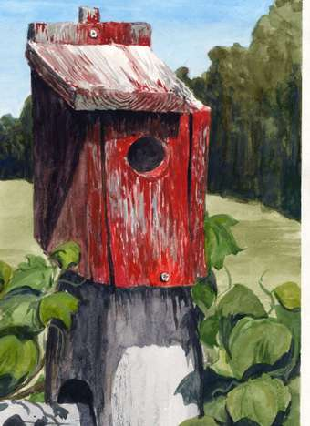 Red Bluebird House watercolor